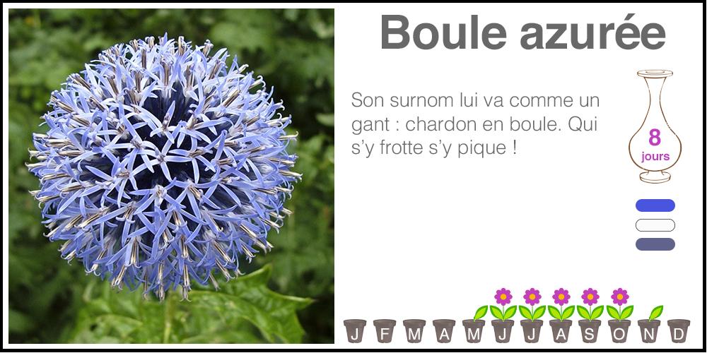 Boule-azuree